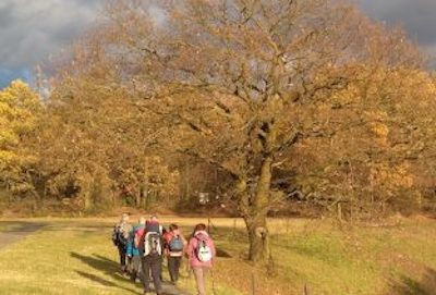 Wandern: Auf der Straße der Arbeit von Lindlar nach Marienheide